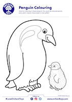 Penguin Colouring Sheet