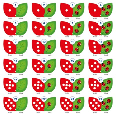 The Game of Ladybirds Misplaced Pieces